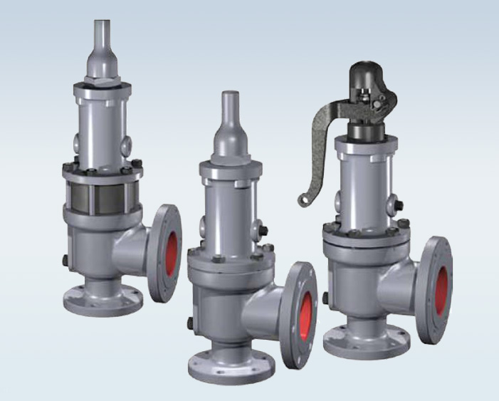 Consolidated Valve Oem Parts And Service