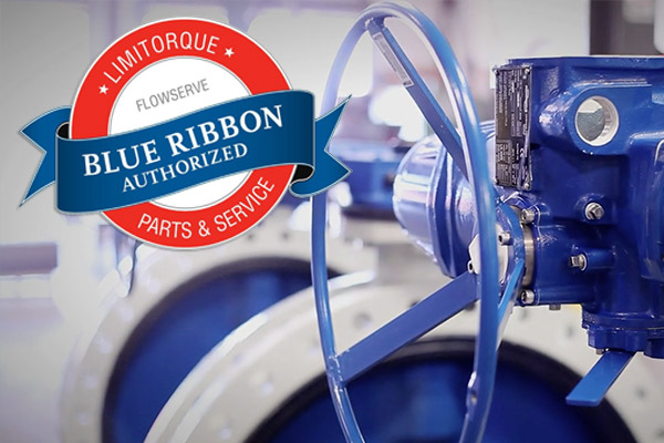 Limitorque Blue Ribbon Service and BEYOND with C&K - blog post image