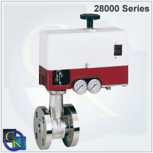 21000 Series Top-Guided Globe Control Valve