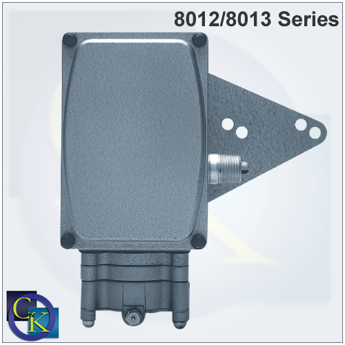 8012/8013 Electro-pneumatic Valve Positioner